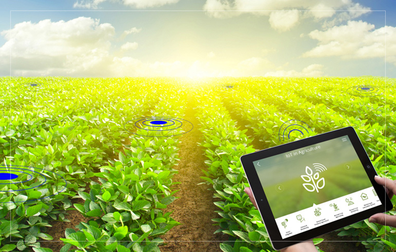 iot.do - IoT Applications in Agriculture 2021: Analysis Research Report - IoT